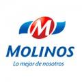 3-MOLINOS