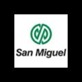 6-SA SAN MIIGUEL.PNG