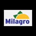 33-MILAGRO.PNG